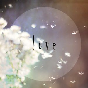 Komorebi - Love