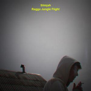 Slimjah - Ragga Jungle Flight