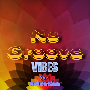 Nu Groove Vibes - Selection 001 (LIVE at BTR 24.02.2013)