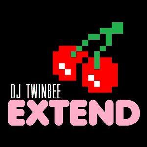 Dj TwinBee - Extend