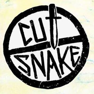 Off to the desert- Cut Snake