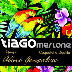 Dj Tiago Merlone - Bossa Lounge 02 (Desfile Espaço Aline Gonçalves)