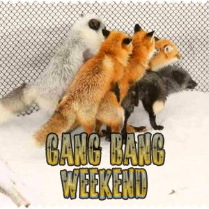 GANG BANG WEEKEND
