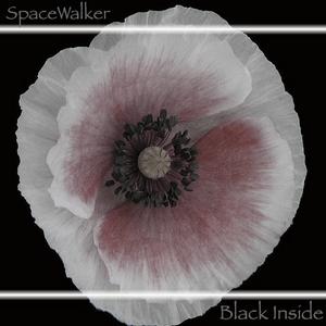 Black Inside [SpaceWalker Mix]