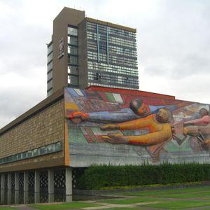 Paseos culturales: Ciudad Universitaria