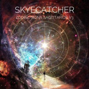 Zodiac Signs Sagittarius Volume 3