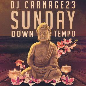 dj carnage23 - sunday down tempo