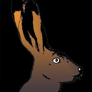 Down The Rabbit Hole Mix - Sam Gellaitry