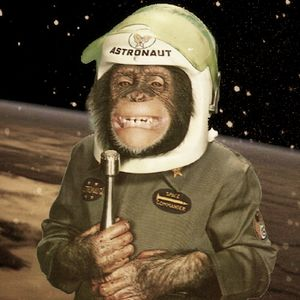 Cheeky Chimp Disco - Vol. 2 - Chimps In Space!
