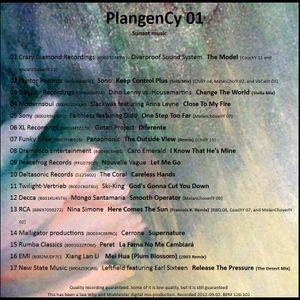 SeeWhy PlangenCy01