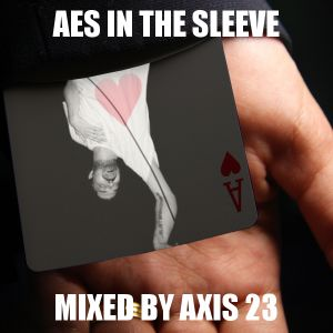 Aes in the Sleeve
