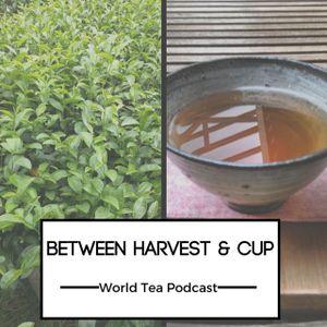 Between Harvest & Cup