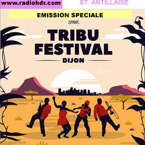 AFRO TALENTS By BLACK VOICES spéciale FESTIVAL TRIBU FESTIVAL (Dijon) 2017  RADIO HDR