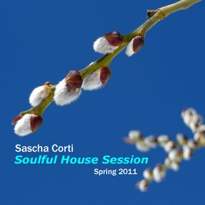Sascha Corti - Soulful Session - Spring 2011