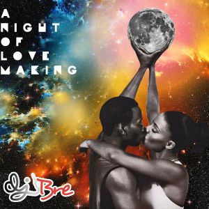 A Night Of Love Making