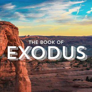 Exodus - Richard Anniss - 15-01-2016AM