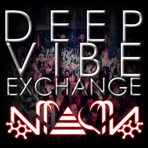 DEEP VIBE EXCHANGE - NIACIN LIVE FROM TRITAYLOR, CHICAGO