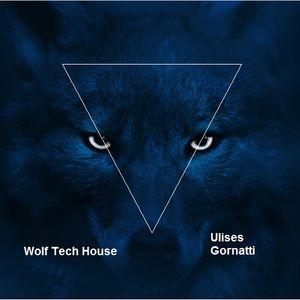 Wolf Tech House