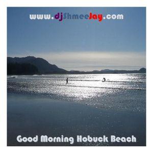 Good Morning Hobuck Beach!
