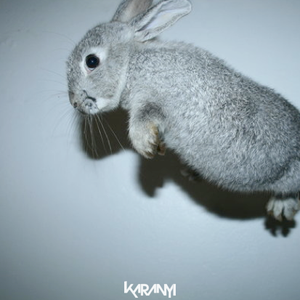 Karanyi - SLOW (Mixtape for Sundays)