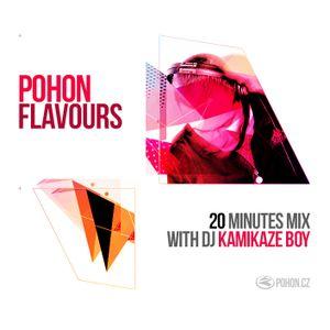 Kamikaze Boy - Pohon Flavours - October 2014