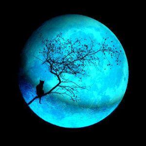 Telepathy - Blue Moon 006