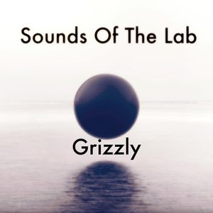 Sounds Of The Lab #2 Grizzly