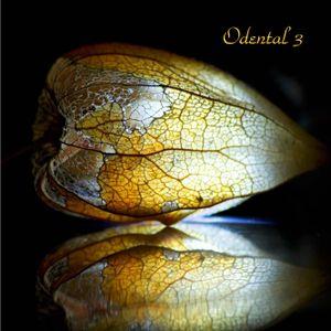 Odental 3