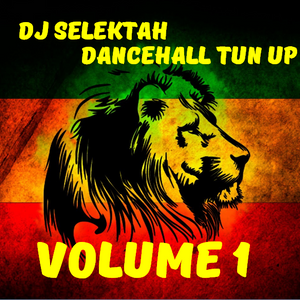 DJ Selektah DanceHall Mix Vol 1