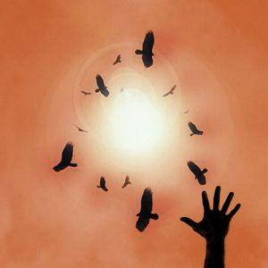A Wake Of Buzzards
