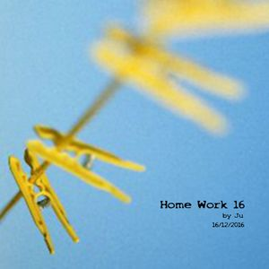 Home Work 16 by Ju - 16.12.2016