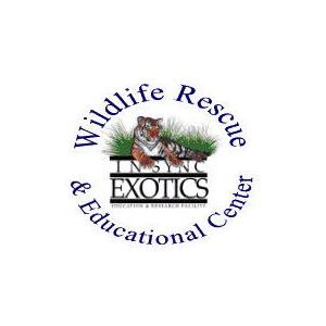 Interview: Lisa Williams, In-Sync Exotics Wildlife Rescue