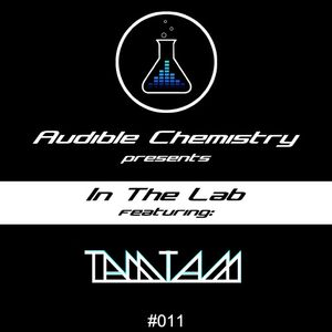In The Lab: Episode 011 ft. TAMtam