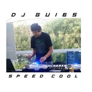 DJ GUIBS SEED COOL
