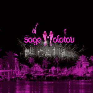 DJ Sage Molotov- Art Basel Mix 2010