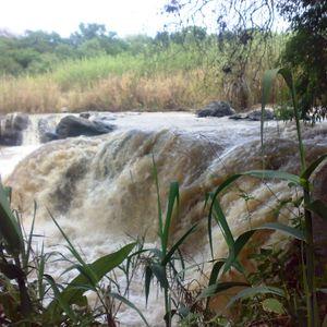 Paseos culturales: las riberas del río Lerma