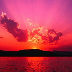 Blue Marlin Ibiza (More Suncream Please Mix)