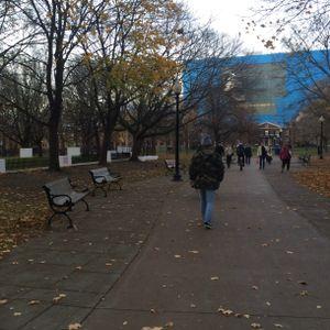 gNat_fall_winter_mix_2015