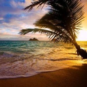 Sound of Islands