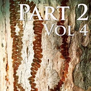 Part 2 - Vol 4