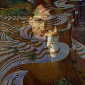 Bright Patterns with Vicki Siolos (Jon Hassell's Empire) @ The Lot Radio 07-22-2021