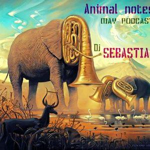Animal notes_Deep/Nu Disco