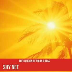 THE ILLUSION OF DRUM N BASS - SHY NEE