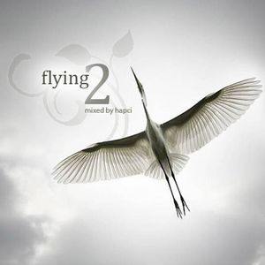 Flying2 - mixed by Hapci. An unique, tranquilly chill out mix for flying or just watching sunset.