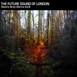 Electric Brain Storm Vol. 6 part 2 - The Future Sound Of London