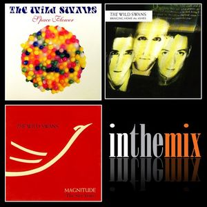 The Wild Swan - Hits n B-sides inTheMix
