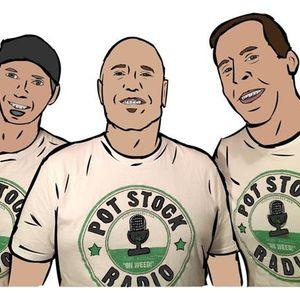 PotStockRadio.com- w/ Wildflower Marijuana $SUN, MJ Holdings $MJNE & Kris Krane