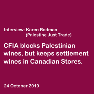 Interview with Karen Rodman: Why Taybeh Beers/Wines are being blocked and held in Canadian storage?