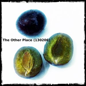 The Other Place (130206)