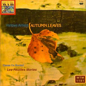 Wreck Autumn Leaves 1181